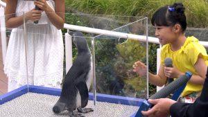 こじるり&新井美羽ちゃん - サンシャイン水族館