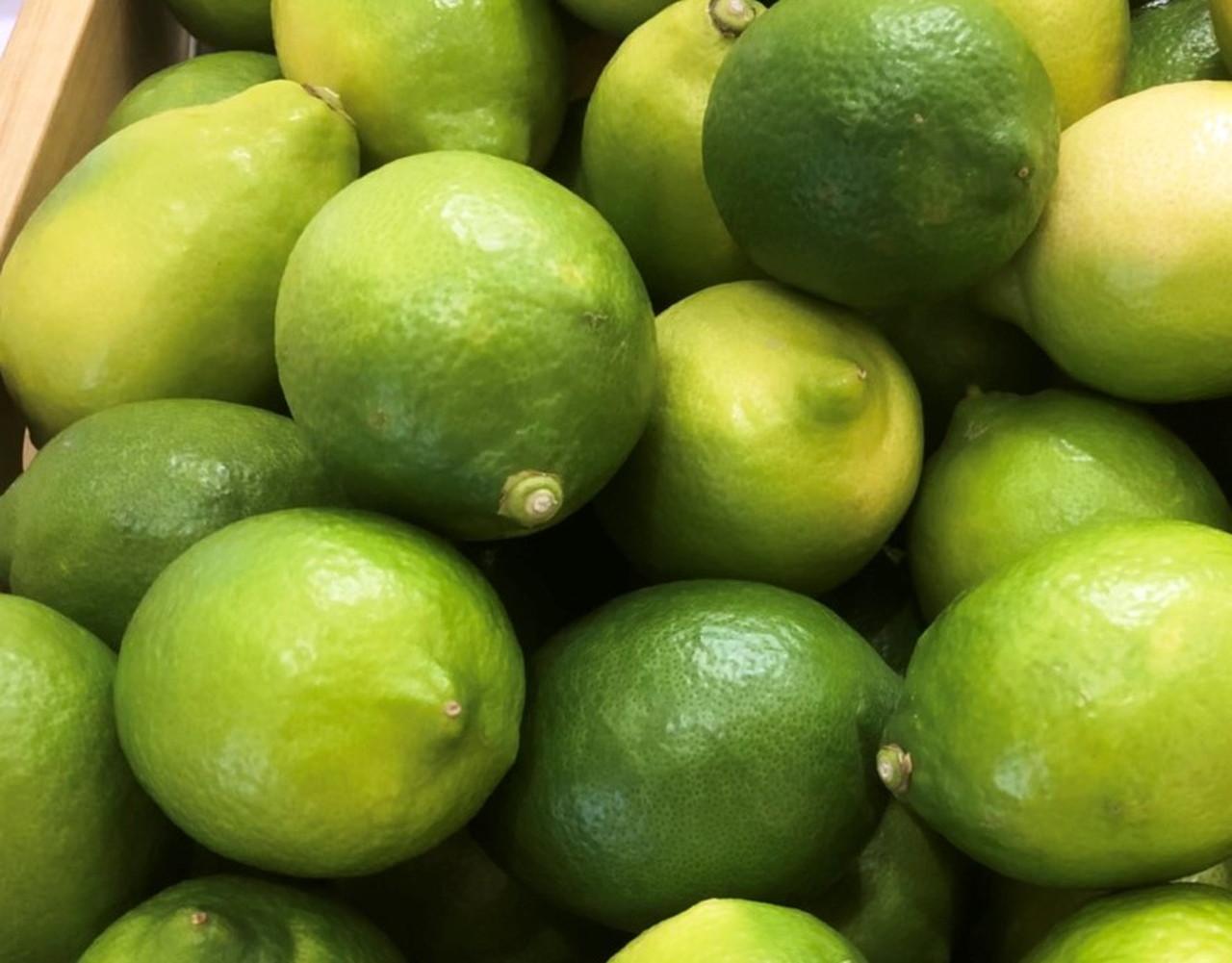 瀬戸内 広島レモン