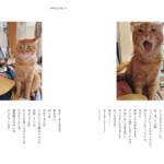 見本ページ③:『ハニオ日記Ⅱ 2018 -2019』