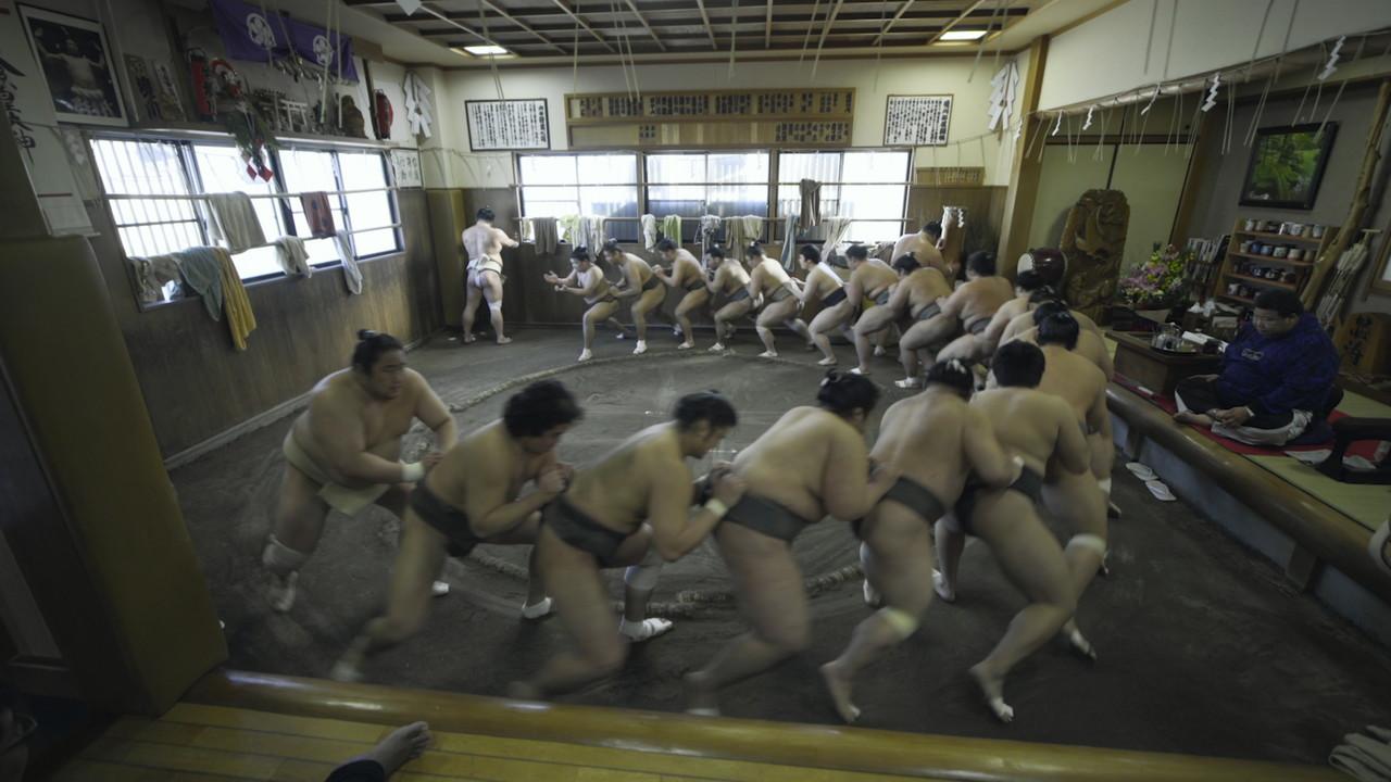 相撲道―サムライを継ぐ者たち―