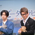 千葉雄大・哀川翔 60羽のウサギに囲まれ対決!子分・カジサックも。映画『ピーターラビット2/バーナバスの誘惑』