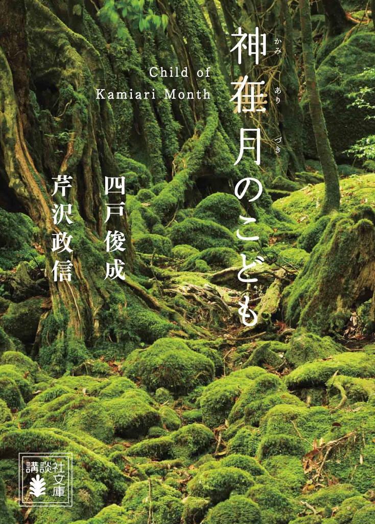 小説(講談社文庫)